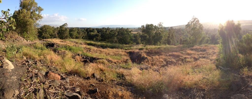 Bethsaida - Fields