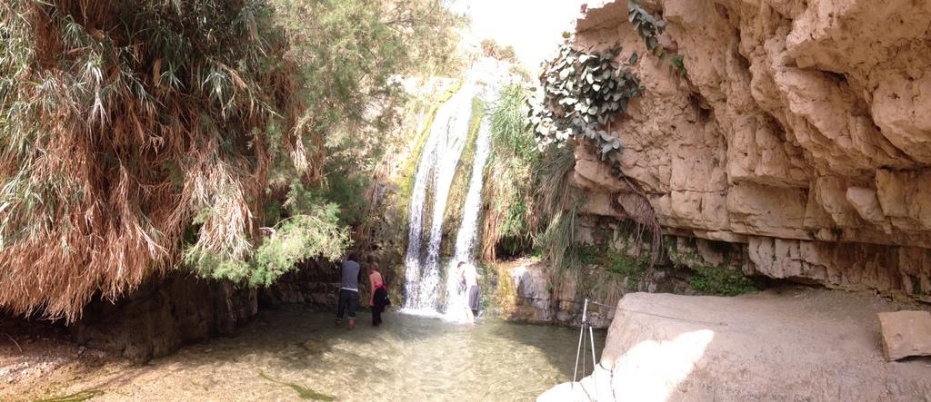 Engedi - Water falls