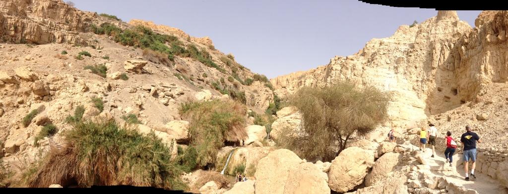 Engedi - Hiking path
