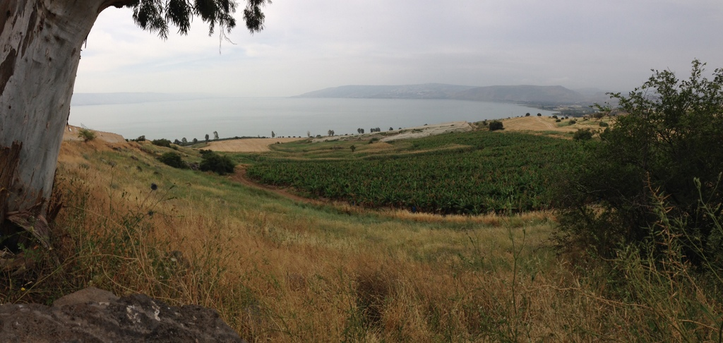 Mt of Beatitudes - Natural amphitheater