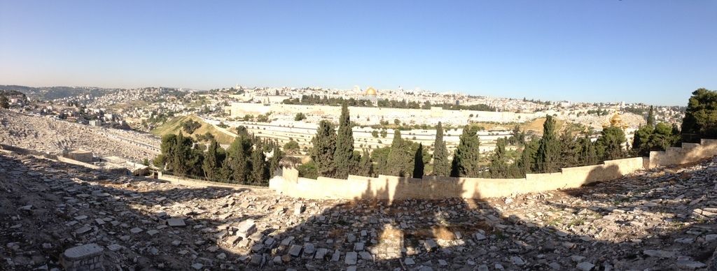 Jerusalem - From top of Mt . of Olives