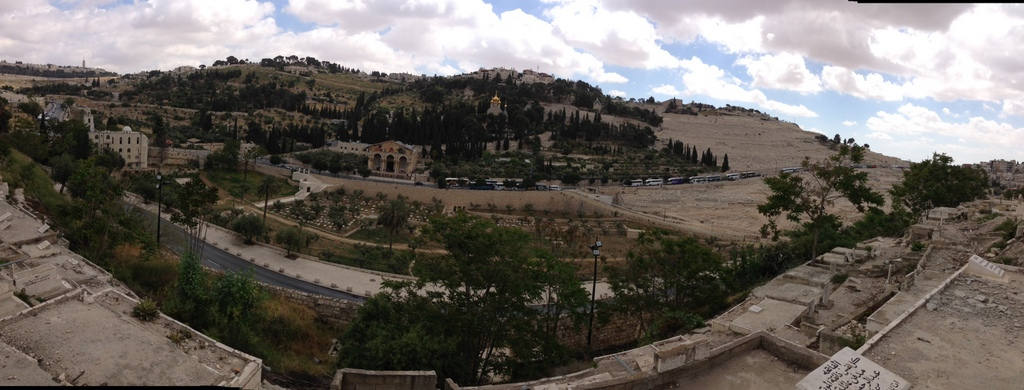 Mt. of Olives - From Eastern Gate