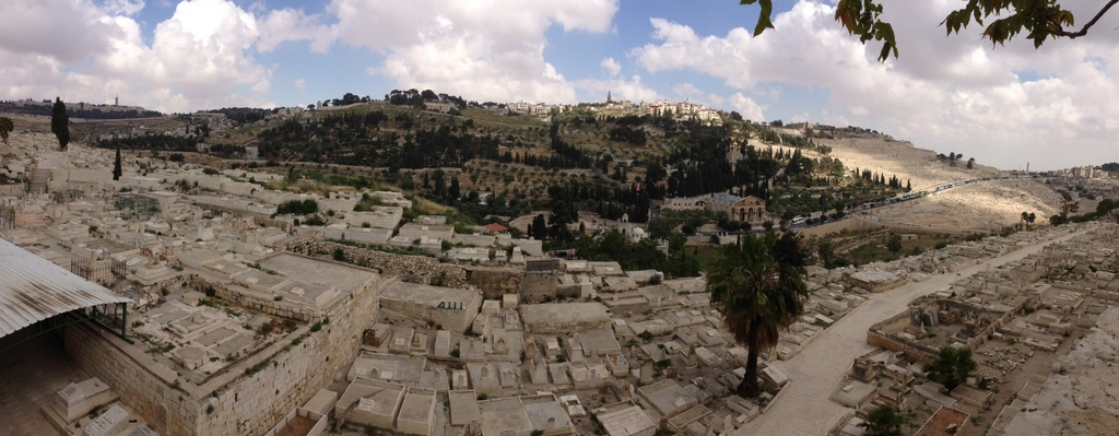 Mt. of Olives - From eastern wall rampart