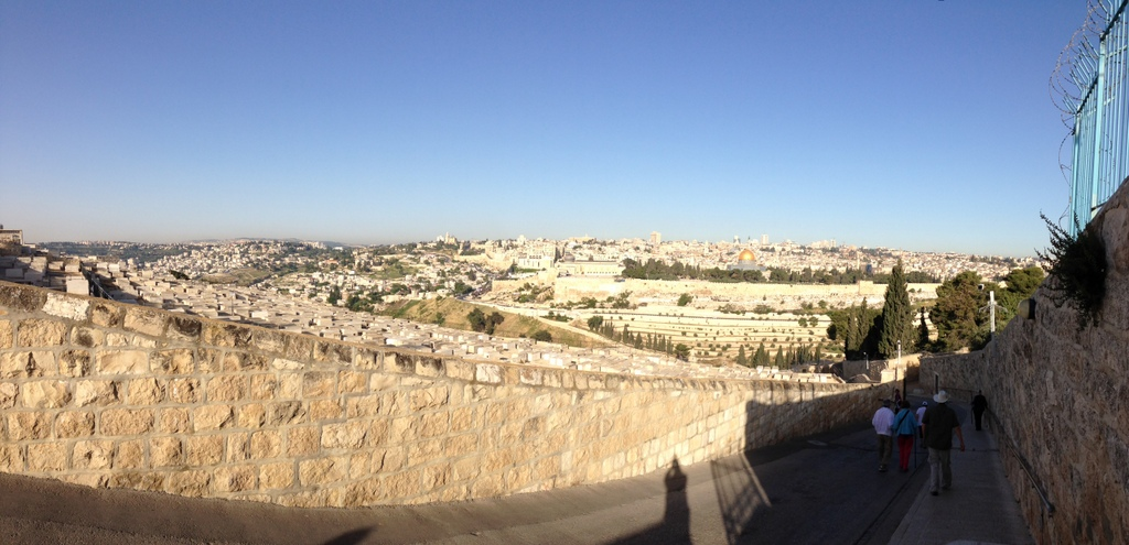 Jerusalem - From the Mt. of Olives Palm Sunday path