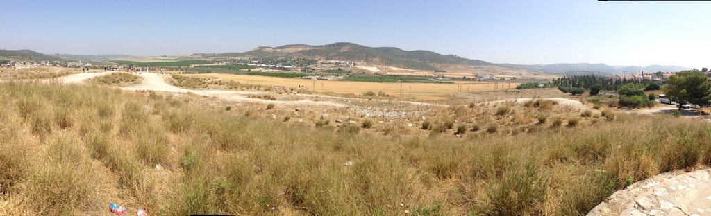 Sorek Valley (from Beth Shemesh)