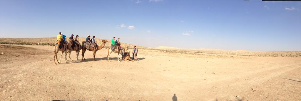 K'far Hanokdim - Camel rides