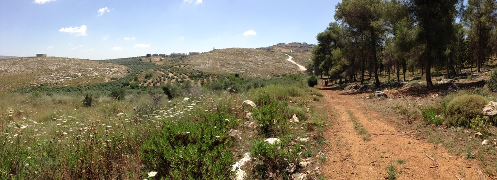 Jesus Trail - Between Sepporis and Nazareth
