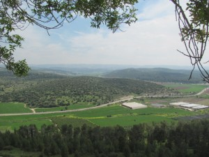 The Elah Valley (David vs. Goliath)