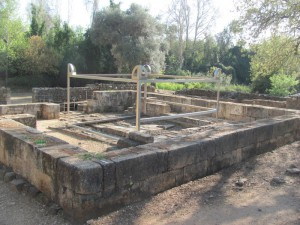 Dan's high place altar area