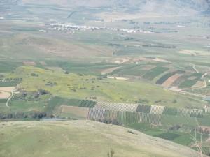 Abel Beit Maacah