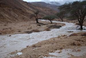 Wadi river flood