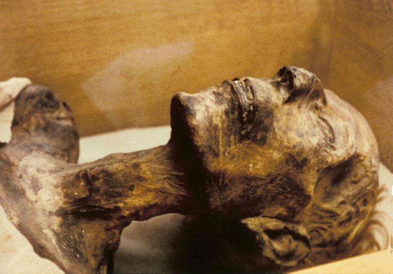 Egyptian museum Ramses 2