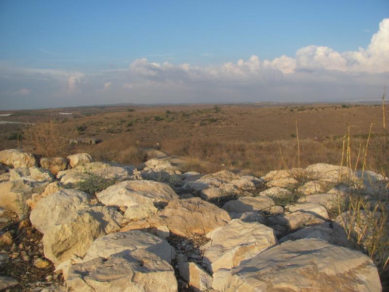 tel lachish palace