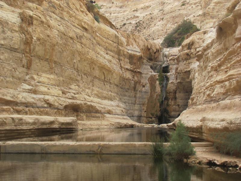 wadi zin reflection pool