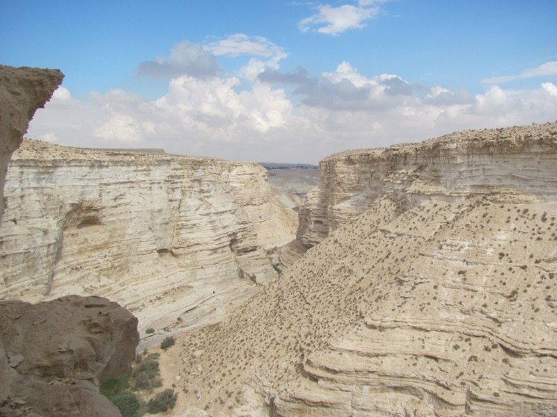 canyon of wadi zin