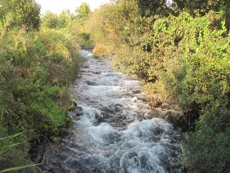 jordan river dan