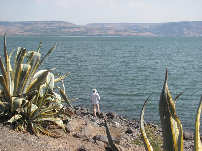 capernaum shoreline