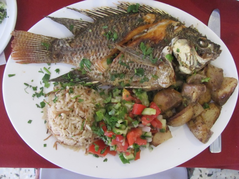 st peter's fish israel
