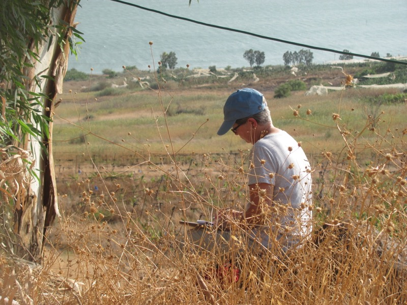 reflection on mt of beatitudes