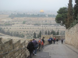 Walking down the Mt. of Olives