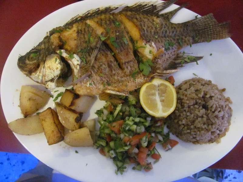 st peters fish tabgha