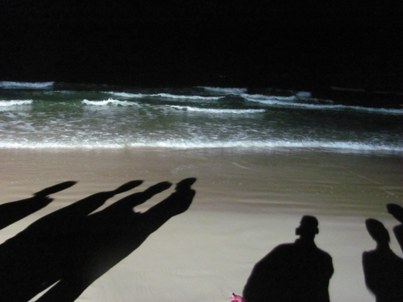 med sea israel