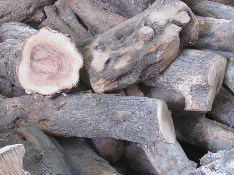 olive wood bethlehem