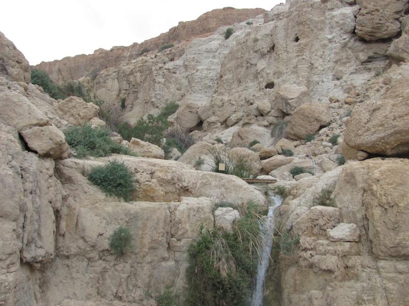 engedi water falls