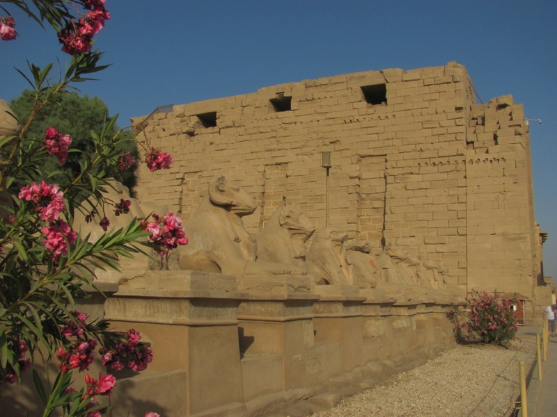 temple of thebes luxor egypt