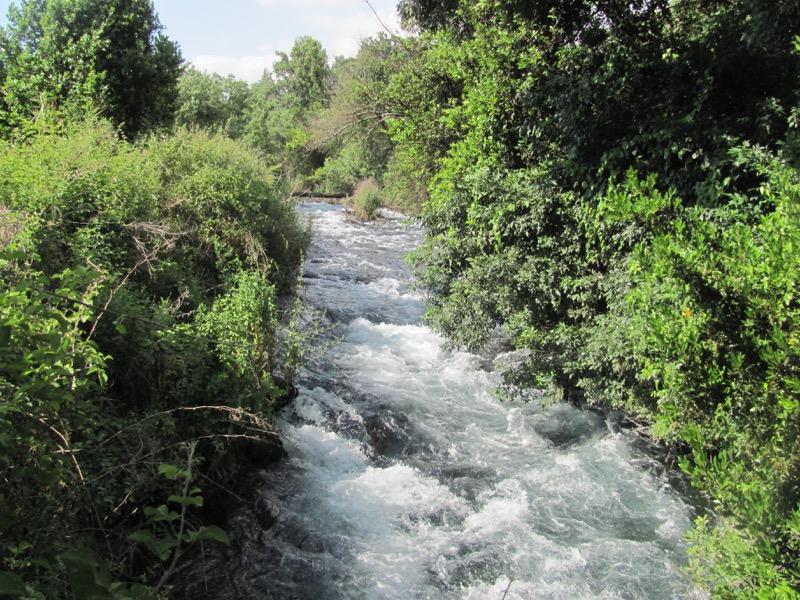 walk through dan park jordan river
