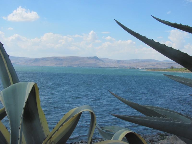 capernaum shoreline sea of galilee