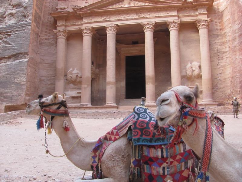 the treasury and camel petra jordan