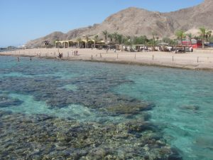 elat, israel, red sea swimming