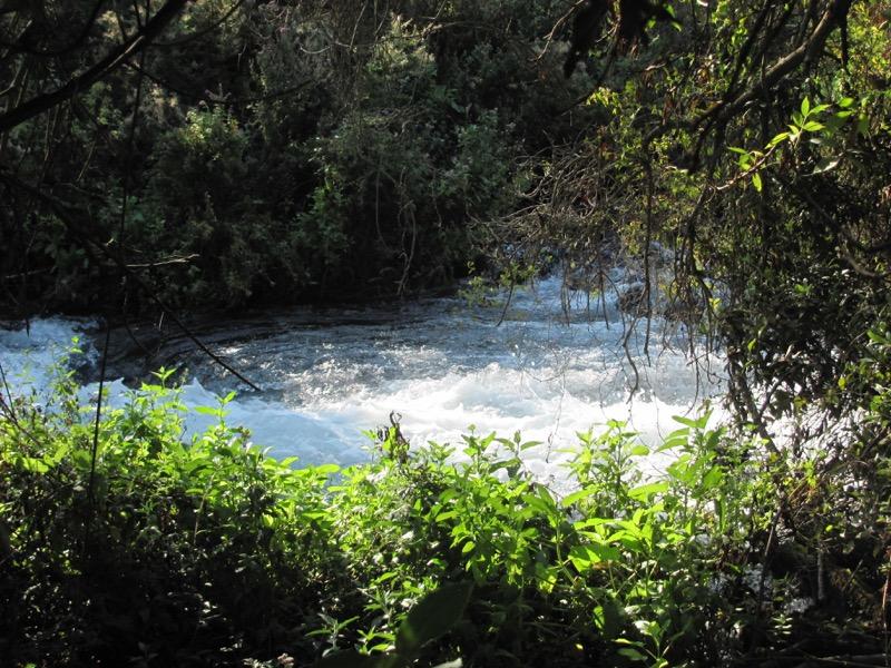 jordan river tel dan