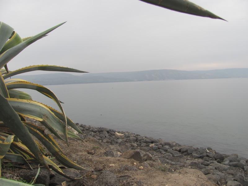 shoreline at Capernaum israel sea of galilee