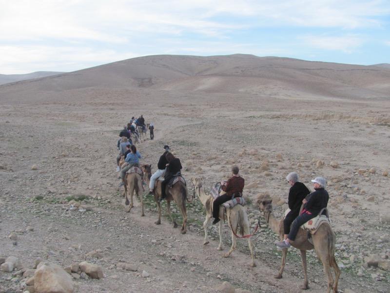 camel ride israel tour hanokdim