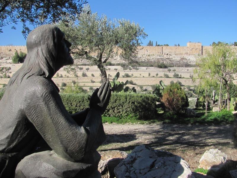 Garden of Gethesmane January 2017 Israel tour