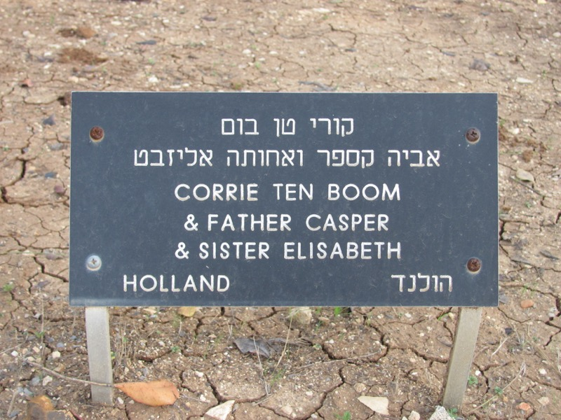 Yad Vashem Corrie ten boom tree Jerusalem January 2017 Israel Tour