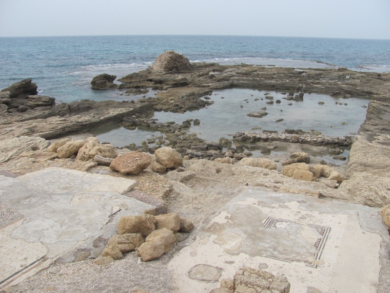 Caesarea palace mosaic swimming pool January 2017 FAM Israel Tour
