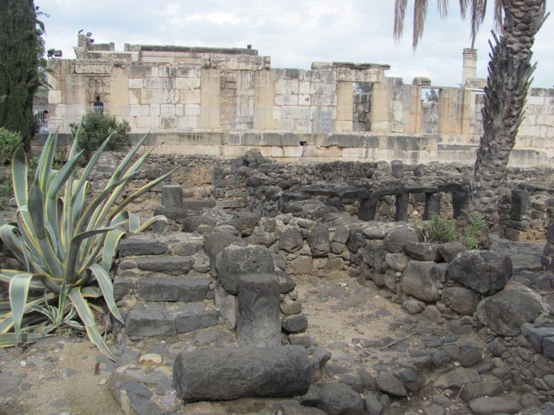 Capernaum January2017 FAM Israel Tour