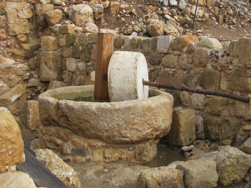 Shiloh oil press January 2017 FAM Israel Tour