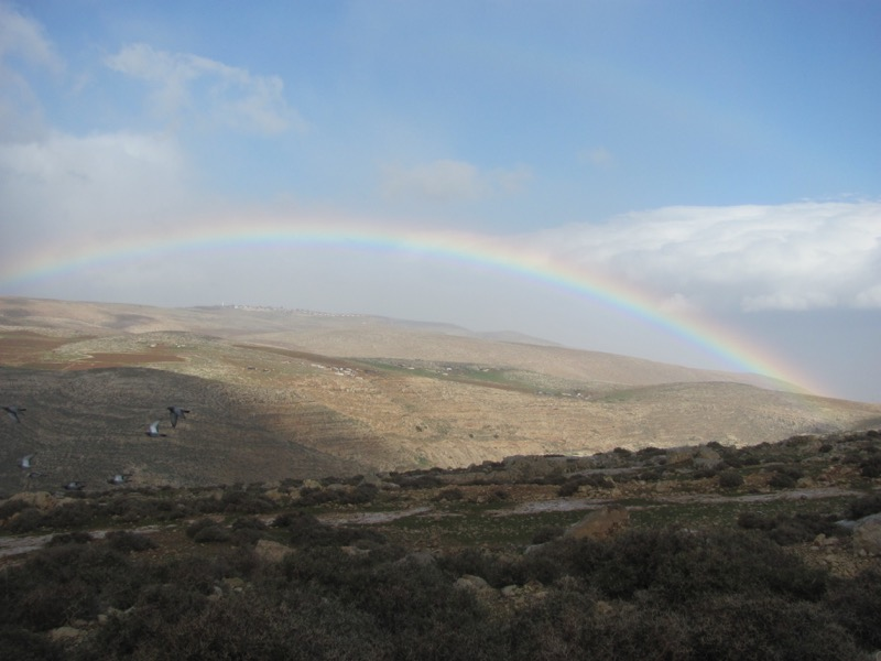 rainbow over Samaria January 2017 FAM Israel Tour