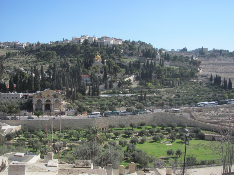 Mt. of Olives January 2017 FAM Israel Tour