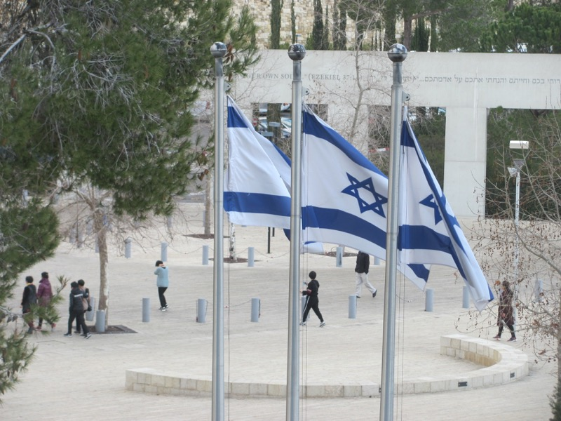 Israeli flags January 2017 FAM Israel Tour
