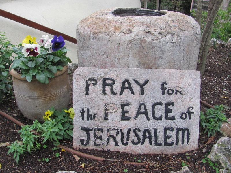 Pray for peace of Jerusalem January 2017 FAM Israel Tour