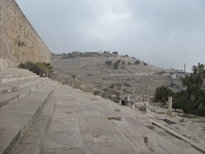 Jerusalem Temple steps January 2017 FAM Israel Tour