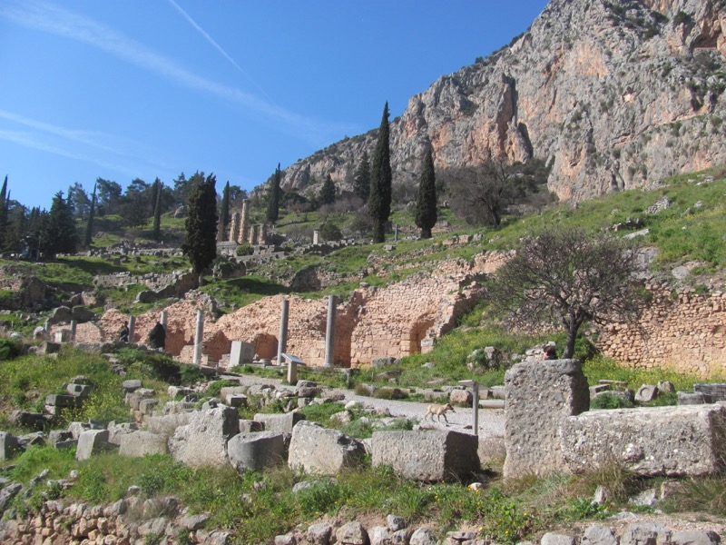 Delphi February 2017 Greece Tour