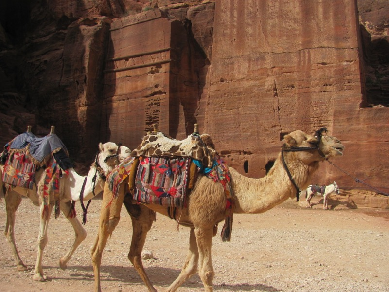 Petra Jordan Israel-Jordan Tour March 2017