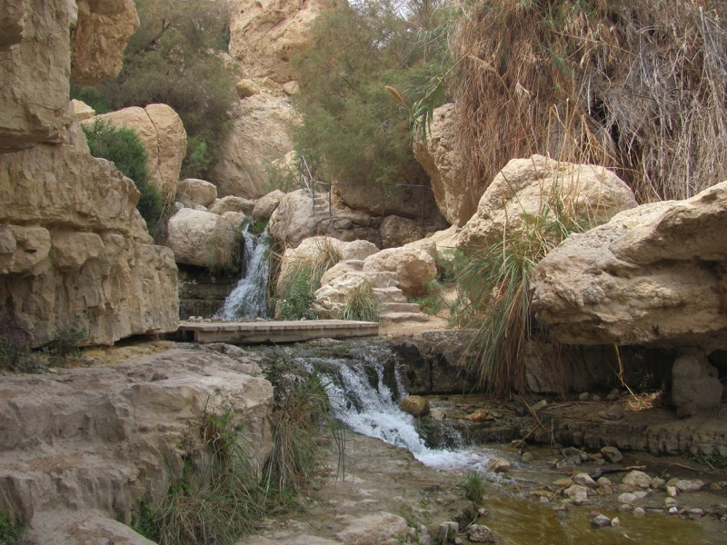 Engedi Israel-Jordan Tour March 2017