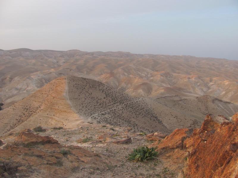 Biblical Israel & Jordan Tour,  March 2017 – Day 9 Summary